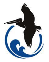 Soaring Pelican, LLC